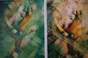 Photographics 2009, fotografie op linnen (50x40)